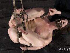 extreme bdsm pleasuring
