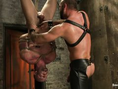 muscled gay hanging upside down and getting his mouth fucked