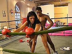 British stud Omar fucks in the boxing ring