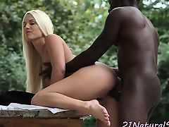 Eurobabe banged by big black cock outdoors