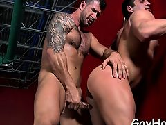 Exposed lovers delight with anal job after softcore blowjob
