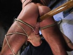 michael roman enjoys bdsm and rough anal penetration